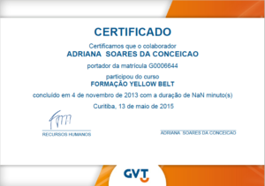 Certificado YellowBelt